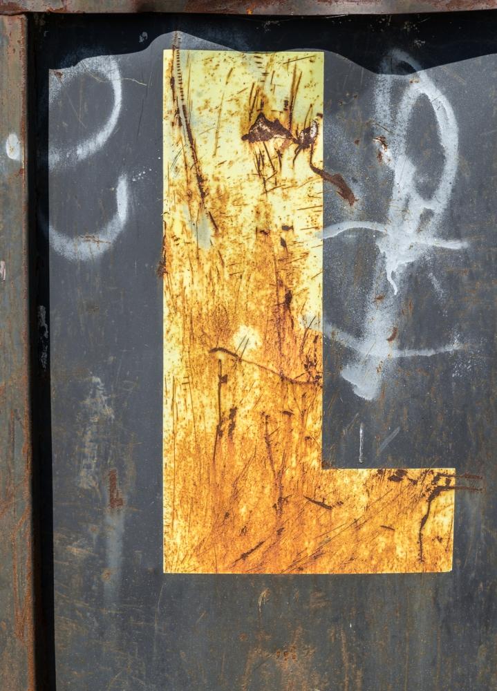 04172016 Dumpster Near Schoepfle Garden-4